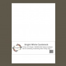 Bright White Premium Cardstock A4 Size 300GSM - 110lb Pack of 10 Sheets