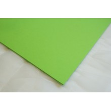 "Light Green Cardstock 9""x12"" 10/Pkg By Get Inspired"