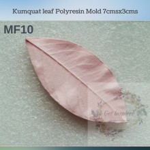 Kumquat leaf Polyresin Mold 7cmsx3cms MF10