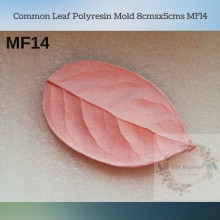 Common Leaf Polyresin Mold 8cmsx5cms MF14