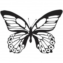 "Majestic Butterfly Jumbo Kaisercraft Clear Stamp 6""X4"""
