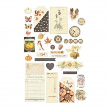 Die-Cuts with Clear Acetate & Foil Accents By Amber Moon Ephemera Cardstock